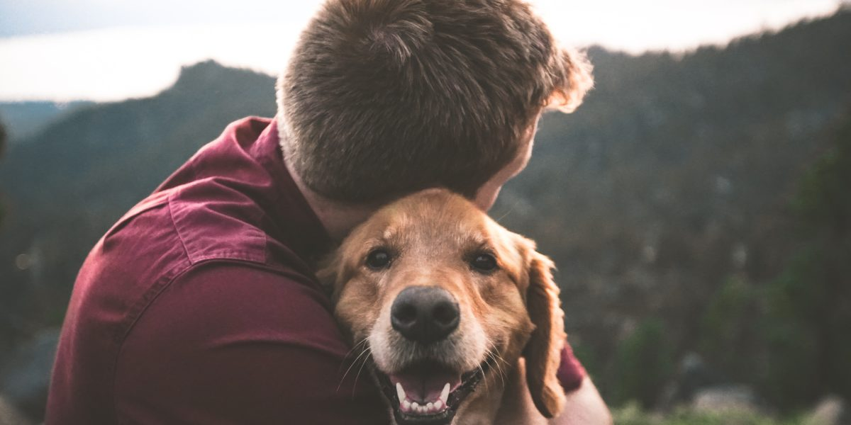 A man hiking with his golden retriever.